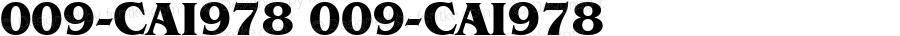009-CAI978 009-CAI978 009-CAI978