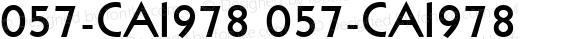 057-CAI978 057-CAI978 057-CAI978