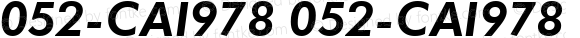 052-CAI978 052-CAI978 052-CAI978