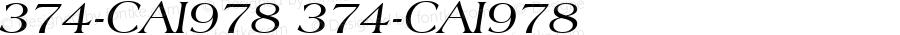 374-CAI978 374-CAI978 374-CAI978