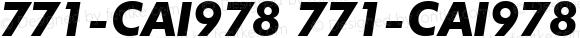 771-CAI978 771-CAI978 771-CAI978