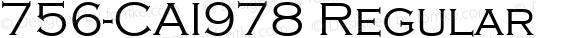 756-CAI978 Regular
