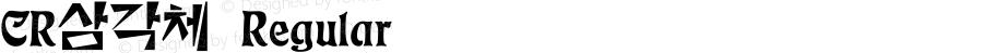 CR삼각체 Regular Ver 1.01