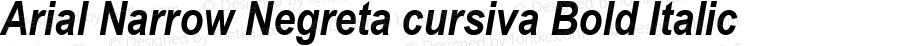 Arial Narrow Negreta cursiva Bold Italic Version 2.30