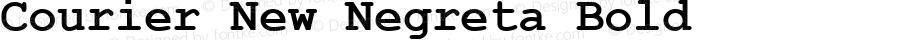 Courier New Negreta Bold MS core font:v2:00