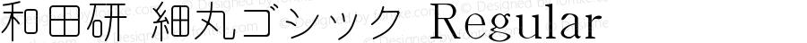 和田研 細丸ゴシック Regular 1.02 (sym.7)+(maru-0-8.4)+(maru-1-8)
