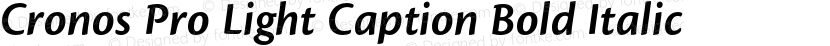 Cronos Pro Light Caption Bold Italic Preview Image