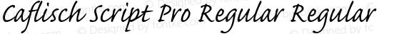 Caflisch Script Pro Regular Regular OTF 1.010;PS 1.000;Core 1.0.30;makeotf.lib1.4.1030