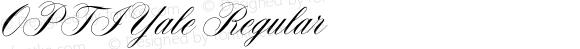 OPTIYale-Script