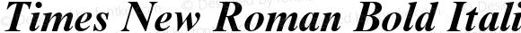 Times New Roman Bold Italic Unknown