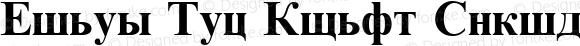 Times New Roman Cyrillic Bold Bold 3