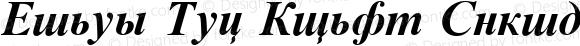 Times New Roman Cyrillic Bold Inclined Bold Italic 2