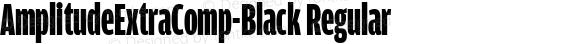 AmplitudeExtraComp-Black Regular Version 1.0