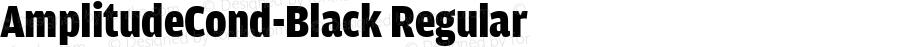 AmplitudeCond-Black Regular Version 1.0
