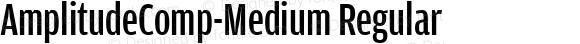 AmplitudeComp-Medium Regular Version 1.0