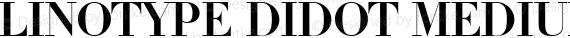Linotype Didot Medium preview image