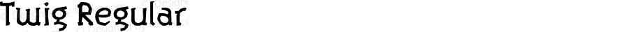 Twig Regular Version 1.000;PS 001.000;hotconv 1.0.38