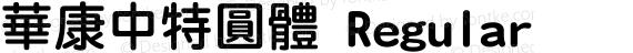 華康中特圓體 Regular preview image