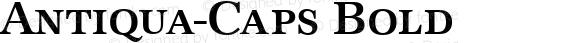 Antiqua-Caps Bold Version 1.0 08-10-2002