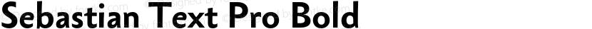Sebastian Text Pro Bold Preview Image