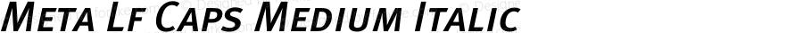 MetaMediumLF-ItalicCaps