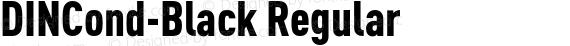 DINCond-Black Regular preview image