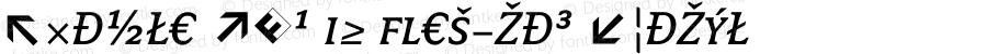 Avance Exp SC Regular Italic 004.301