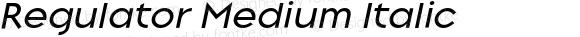 Regulator Medium Italic 001.000