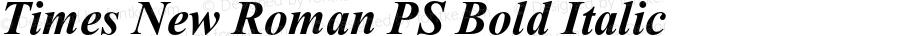 Times New Roman PS Bold Italic 001.001