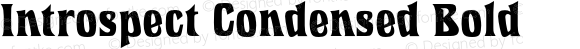 Introspect Condensed Bold 4.0