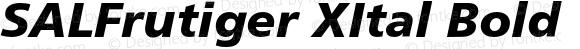 SALFrutiger XItal Bold 001.000