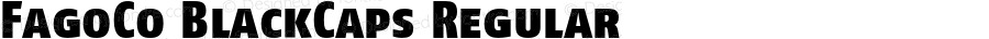 FagoCo BlackCaps Regular 001.000