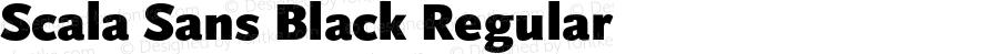 Scala Sans Black Regular 001.000