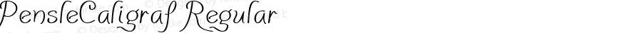 PensleCaligraf Regular Macromedia Fontographer 4.1.3 9/5/02