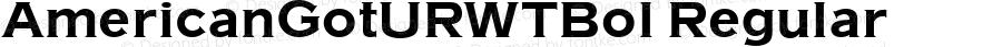 AmericanGotURWTBol Regular Version 1.05