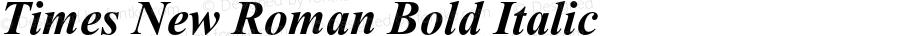 Times New Roman Bold Italic 001.004