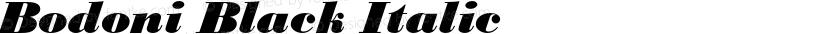 Bodoni Black Italic Preview Image