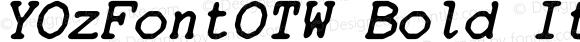YOzFontOTW Bold Italic
