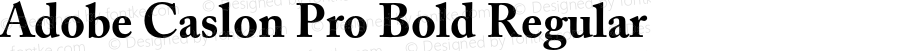 ACaslonPro-Bold