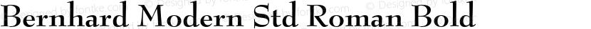 Bernhard Modern Std Roman Bold Preview Image