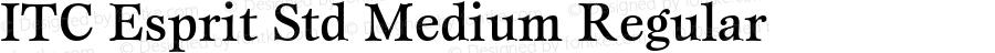 ITC Esprit Std Medium Regular Version 2.031;PS 002.000;hotconv 1.0.50;makeotf.lib2.0.16970