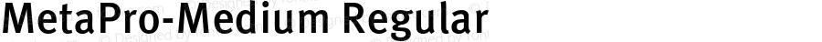 MetaPro-Medium Regular Version 7.460;PS 7.046;hotconv 1.0.38