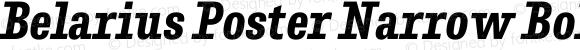 Belarius Poster Narrow Bold Oblique