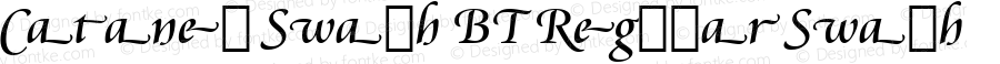 Cataneo Swash BT Regular Swash Version 1.01 emb4-OT