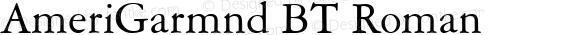 AmeriGarmnd BT Roman Version 1.01 emb4-OT