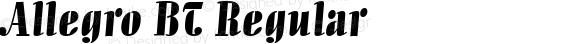 Allegro BT Regular Version 1.01 emb4-OT