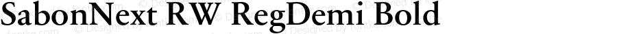 SabonNext RW RegDemi Bold Version 1.000;PS 001.000;hotconv 1.0.38