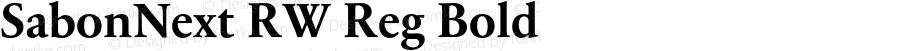 SabonNext RW Reg Bold Version 1.000;PS 001.000;hotconv 1.0.38