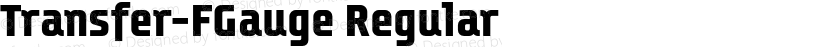Transfer-FGauge Regular Preview Image