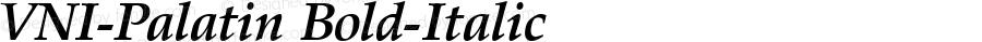 VNI-Palatin Bold-Italic 1.0 Tue Nov 30 12:33:48 1993